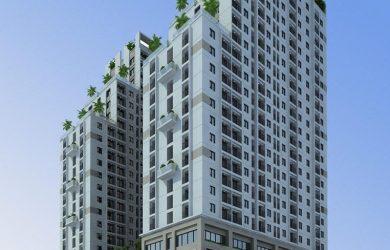 tong-quan-duoi-ca-building